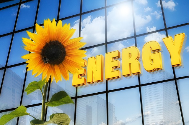 You Can Heal Trauma Through Energy Medicine